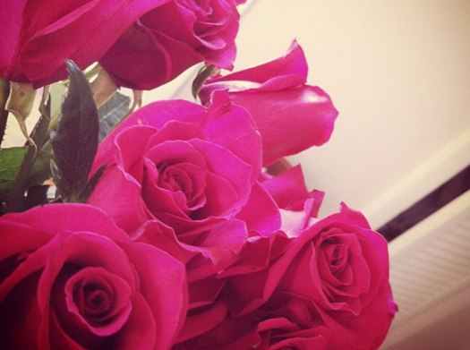 roses_new