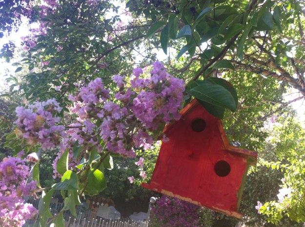 birdhouse_new_feldon