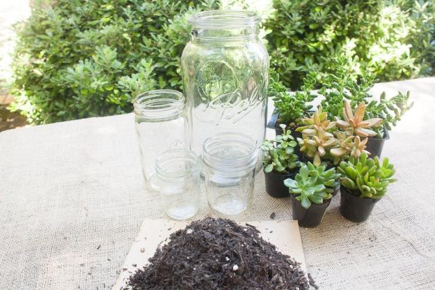 succulentmaterials