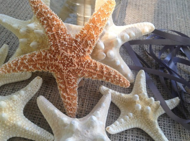 starfishED