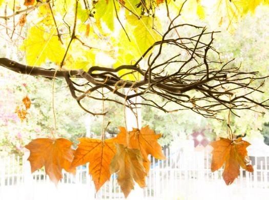 leafmain